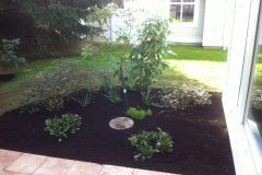 Lush-Garden-Reno-After