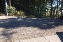 Lush-Driveway-Weeds-After-