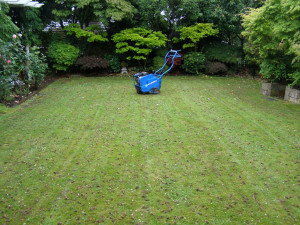 Aerating Lawns on Vancouver Island