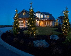 Christmas Lighting by the Pros